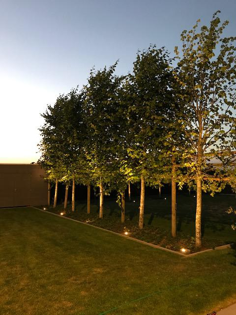 Aanlichten bomen grondspot DeltaLight 'Wingene'